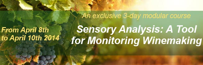 Sensory Analysis : A tool for monitoring Winemaking